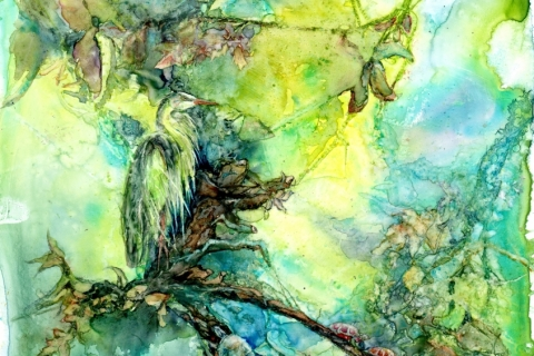 Heron and Turtles